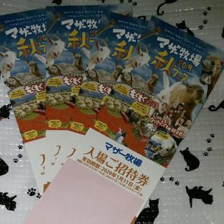 マザー牧場 入場 ご招待券 4枚 (遊園地/テーマパーク)