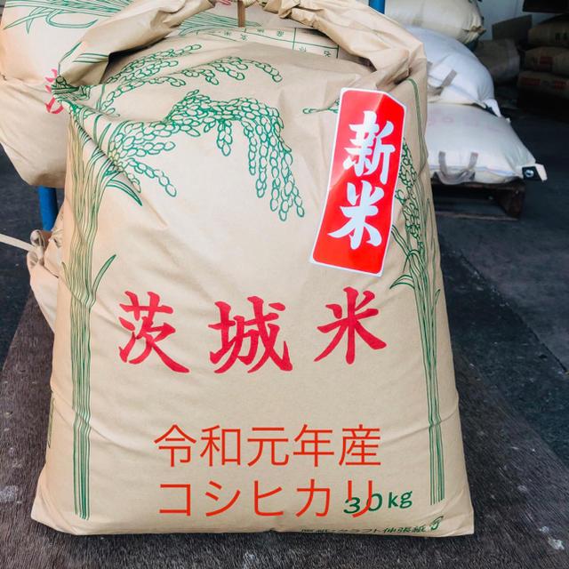 令和元年産茨城県産コシヒカリ 玄米25kg 食品/飲料/酒の食品(米/穀物)の商品写真