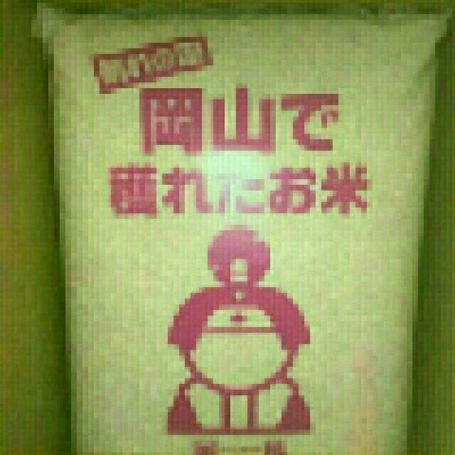 米 食品/飲料/酒の食品(米/穀物)の商品写真