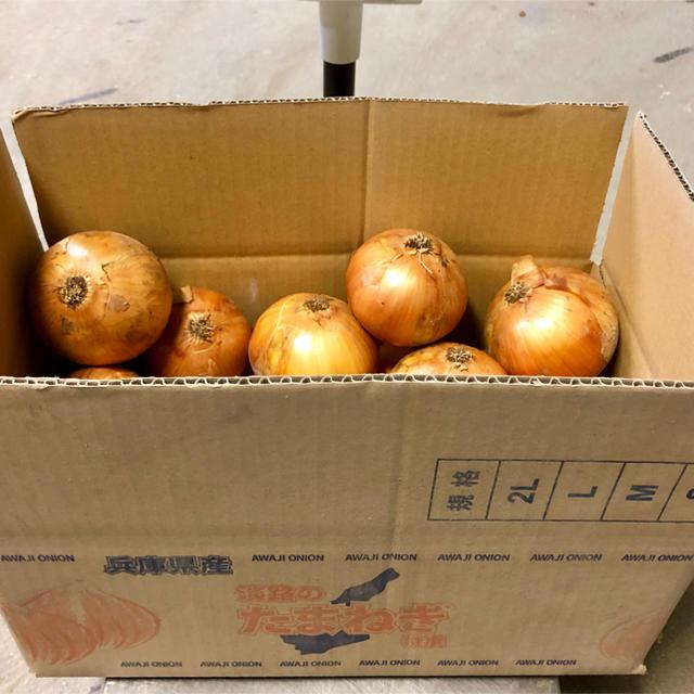 淡路島産 玉ねぎ 5kg 食品/飲料/酒の食品(野菜)の商品写真