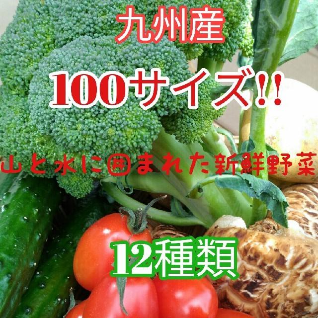 九州産冬野菜 12種類!箱いっぱい詰め合わせSET!! 食品/飲料/酒の食品(野菜)の商品写真