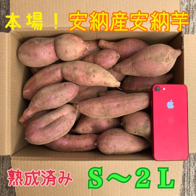 本場!熟成済み安納芋 5.5kg 食品/飲料/酒の食品(米/穀物)の商品写真