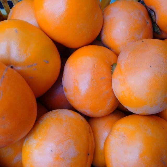 富有柿和歌山産お徳用家庭用!約9キロ以上 食品/飲料/酒の食品(フルーツ)の商品写真