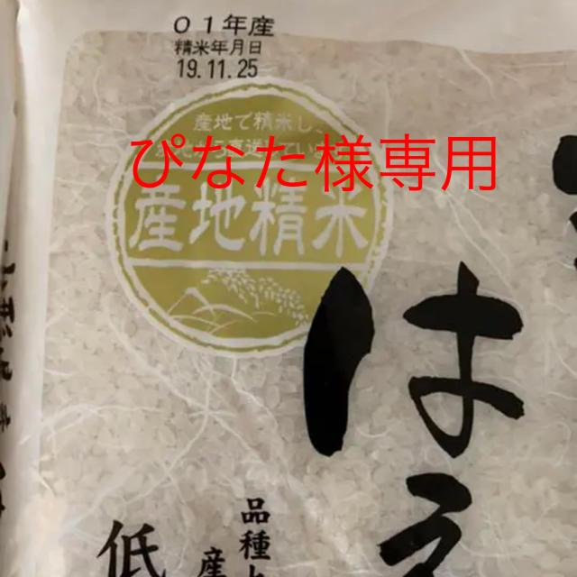 ぴなた様専用 はえぬき 米 食品/飲料/酒の食品(米/穀物)の商品写真