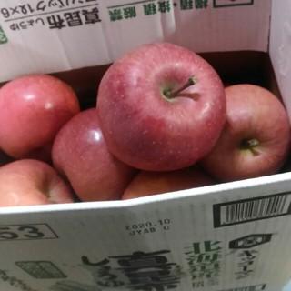 規格外 サンフジ 箱込み5kg(フルーツ)