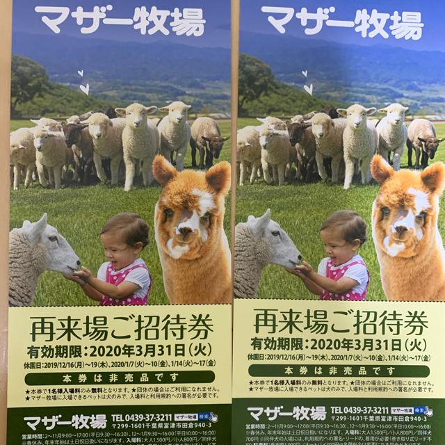 マザー牧場入場券2名分 チケットの施設利用券(遊園地/テーマパーク)の商品写真
