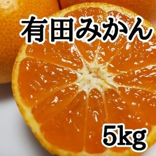 有田みかん(大玉)(フルーツ)