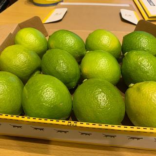 愛媛県産グリーンレモン12個(フルーツ)