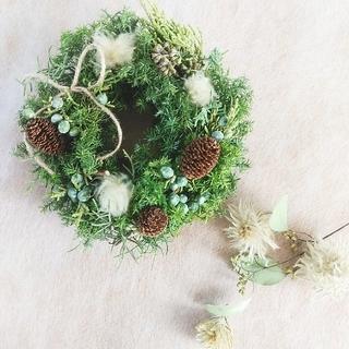 ◦.•可愛いmini wreath•.◦(ドライフラワー)