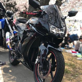 カワサキ(カワサキ)のNINJA250r 値下げ交渉可能 不具合なし(車体)