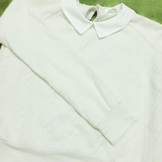 シマムラ(しまむら)の襟付きトップス(ニット/セーター)