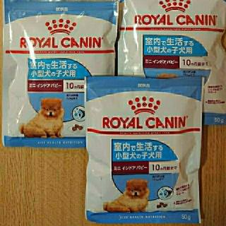 ROYAL CANIN - ロイヤルカナン 試供品 3袋