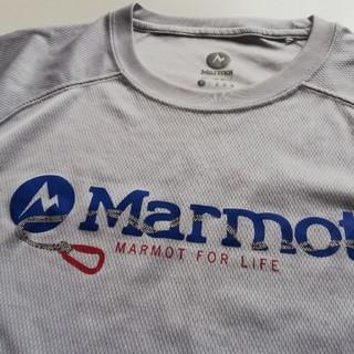 MARMOT - マーモットMarmot Tシャツ