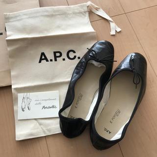 A.P.C - ポルセリ APC 38