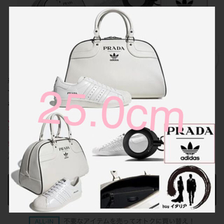 PRADA - 世界限定 700セット プラダ × アディダス