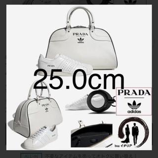 プラダ(PRADA)の世界限定 700セット プラダ × アディダス(スニーカー)