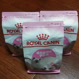 ROYAL CANIN - ロイヤルカナン キトン 400g×3コ