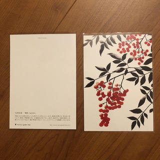 AfternoonTea - 最新 12月限定 nana's green tea ポストカード 2枚セット