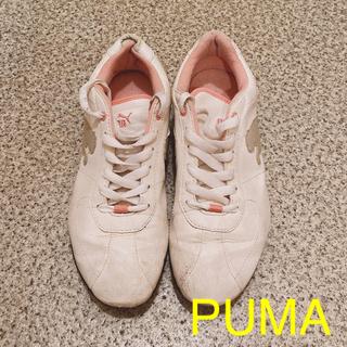プーマ(PUMA)のPUMA スニーカー レディース(スニーカー)