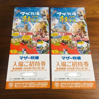 マザー牧場 入場券 チケット★(遊園地/テーマパーク)