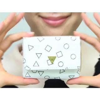 i - mini ミニ 2013年 4月号付録 i アイ特製 小さくてカワイイ♥おサイフ