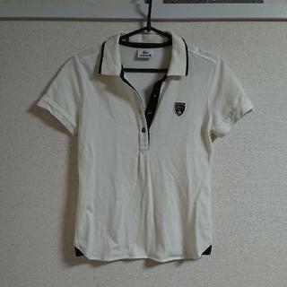 LACOSTE - 【美品✨】LACOSTE ゴルフ