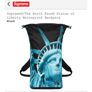 Supreme - supreme the north face 19aw backpack