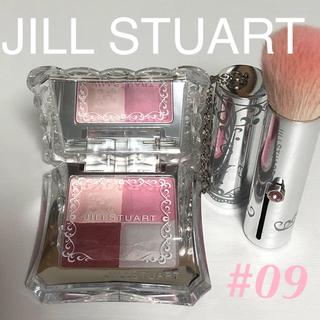 JILLSTUART - JLLL STUART ミックスブラッシュコンパクト N 09