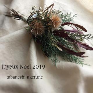 フワフワのプルモーサムと針葉樹が香る クリスマス スワッグ ドライフラワー(ドライフラワー)