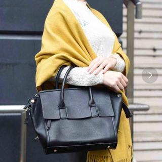 プレーンクロージング(PLAIN CLOTHING)のPLAIN CLOTHING フラッパ2WAYバッグ(ハンドバッグ)