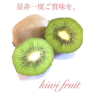 《未追熟》《甘い》千葉県船橋産 グリーンキウイフルーツ《送料無料》(フルーツ)