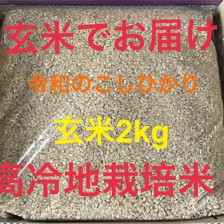 玄米でお届け「令和のこしひかり」2kg 高冷地栽培米(米/穀物)