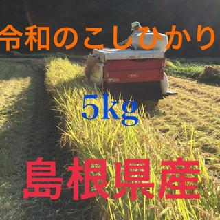 島根県産「令和のこしひかり」5kg 高冷地栽培米(米/穀物)