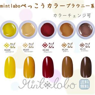 【秋色 即購入可】mint laboべっ甲カラーブラウニー系ジェル5個セット(カラージェル)