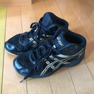 アシックス(asics)のasics バスケットシューズ23.5cm(バスケットボール)