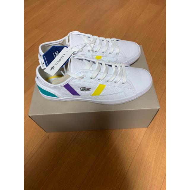 LACOSTE(ラコステ)の☆新品未使用☆ ラコステ スニーカー ウィメンズ 23.5cm レディースの靴/シューズ(スニーカー)の商品写真