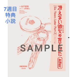 カドカワショテン(角川書店)の冴えない彼女の育てかた 小説(キャラクターグッズ)