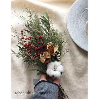 真っ白な綿花と真っ赤な野ばらの実が可愛らしい 冬を彩る スワッグ ドライフラワー(ドライフラワー)