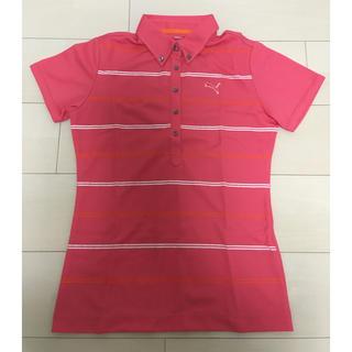 プーマ(PUMA)の*PUMA プーマ*ゴルフウェア ポロシャツ*ピンクストライプ*Mサイズ*(ウエア)