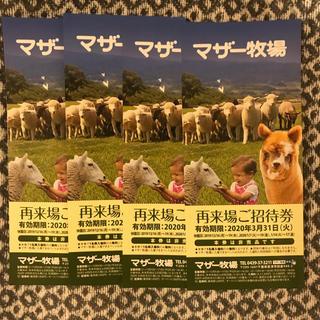 マザー牧場  入場招待券 4枚セット(遊園地/テーマパーク)