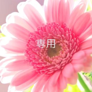アッカ(acca)の新品未使用 ♡ acca ♡ 25周年限定 クリップ 大人気カラー ジェット(バレッタ/ヘアクリップ)