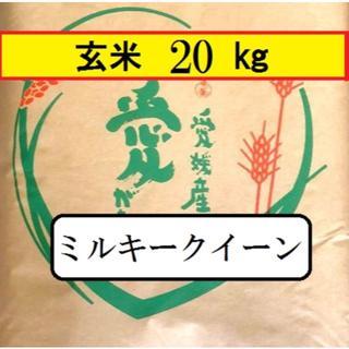 お米 令和元年 愛媛県産ミルキークイーン 玄米 20㎏