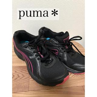 プーマ(PUMA)のpuma  プーマ スニーカー (スニーカー)