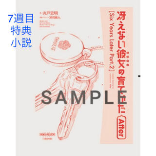 カドカワショテン(角川書店)の冴えない彼女の育て方 小説(キャラクターグッズ)