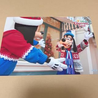 ディズニー(Disney)のディズニーランド 2019クリスマス スペシャルフォト (写真)