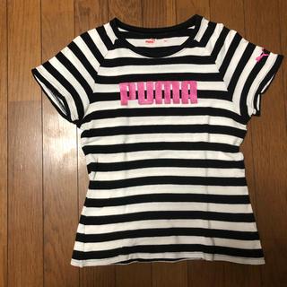 プーマ(PUMA)のTシャツ(Tシャツ(半袖/袖なし))