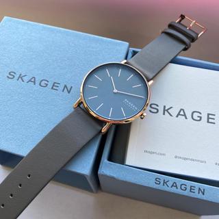 SKAGEN - 19年秋冬新作 スカーゲン 腕時計 レディース SKW2794