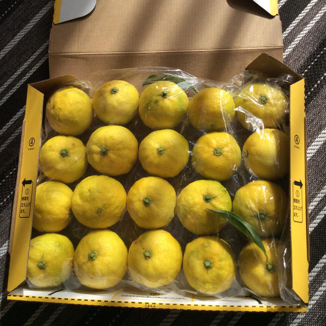 柚子 ゆず 1キロ超 食品/飲料/酒の食品(野菜)の商品写真