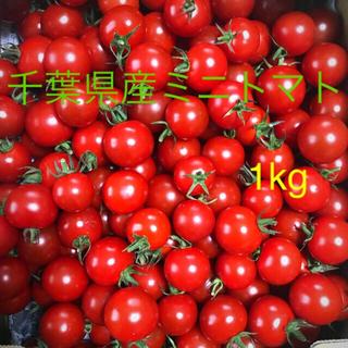 ミニトマト1kg
