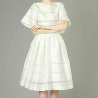 ルシェルブルー(LE CIEL BLEU)のスカート(ひざ丈スカート)